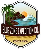 bluezone-sm-logo-176